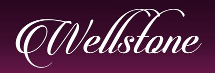 wellstone-shop.de Partnerprogramm